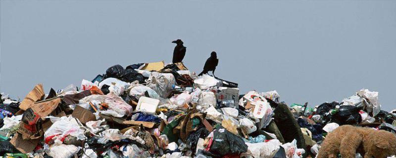 垃圾废气处理